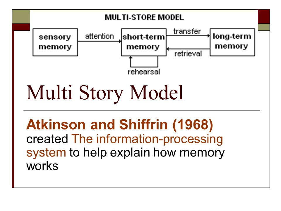 Multi Story Model Atkinson and Shiffrin (1968) created The information-processing system to help explain how memory works.