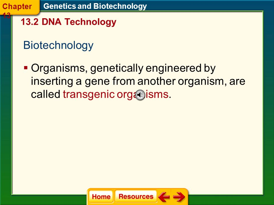 Chapter 13 Genetics and Biotechnology DNA Technology. Biotechnology.