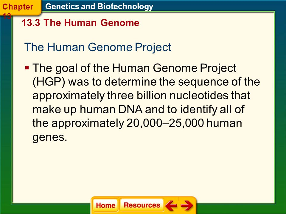 The Human Genome Project