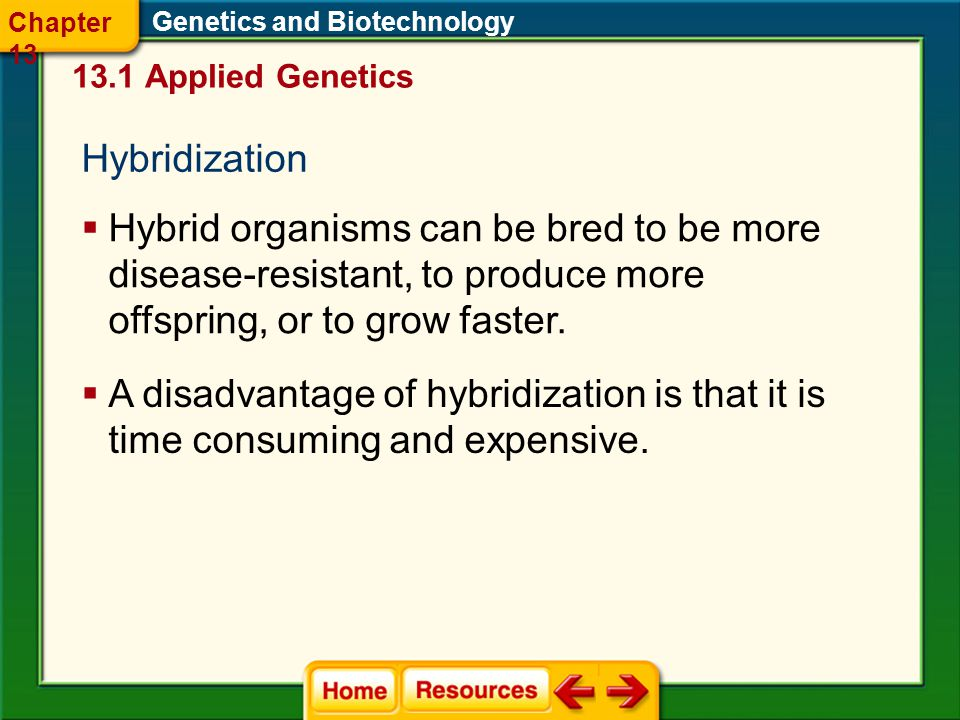 Chapter 13 Genetics and Biotechnology Applied Genetics. Hybridization.