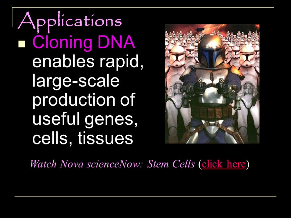 Watch Nova scienceNow: Stem Cells (click here)