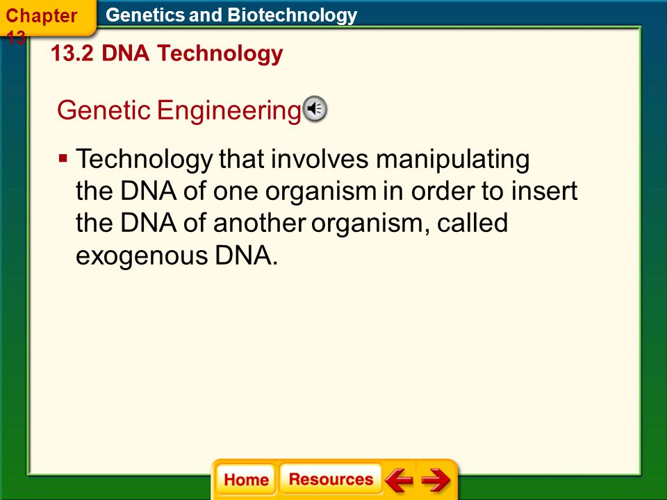 Chapter 13 Genetics and Biotechnology DNA Technology. Genetic Engineering.