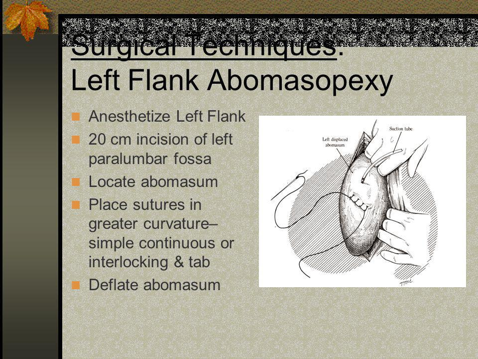 Surgical Techniques: Left Flank Abomasopexy