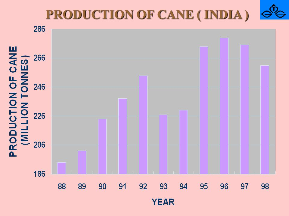 PRODUCTION OF CANE ( INDIA )