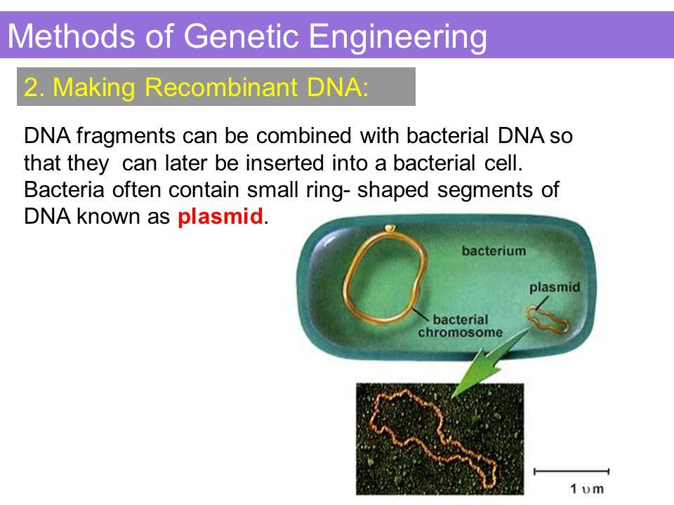 Methods of Genetic Engineering