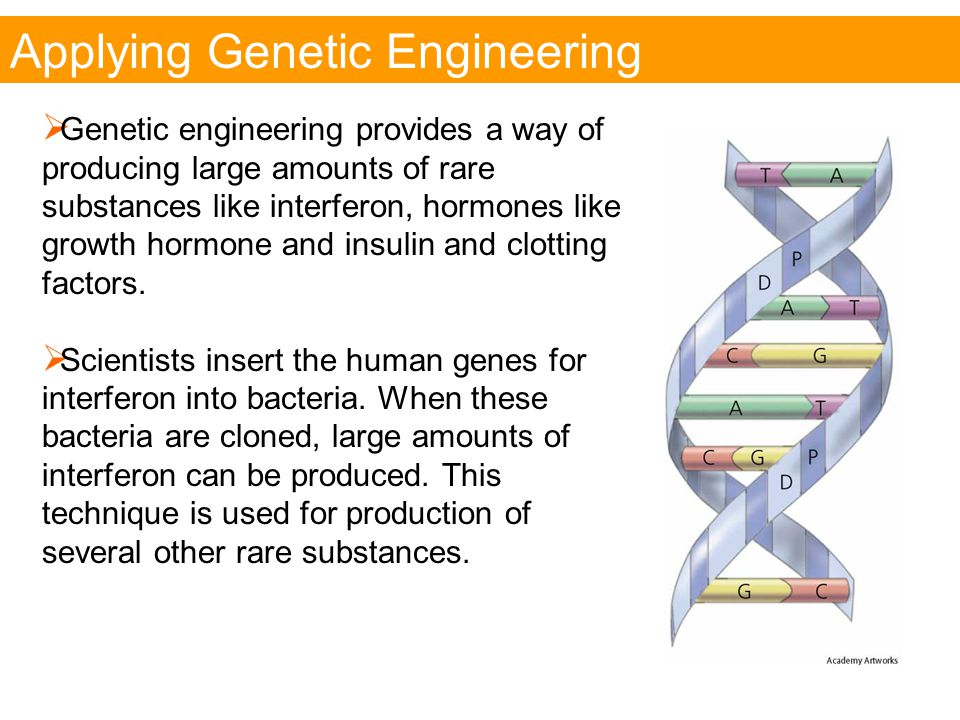 Applying Genetic Engineering