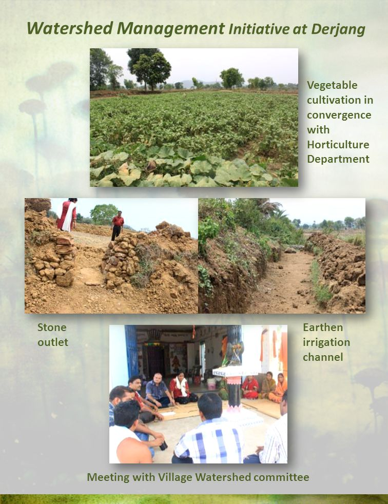 Watershed Management Initiative at Derjang