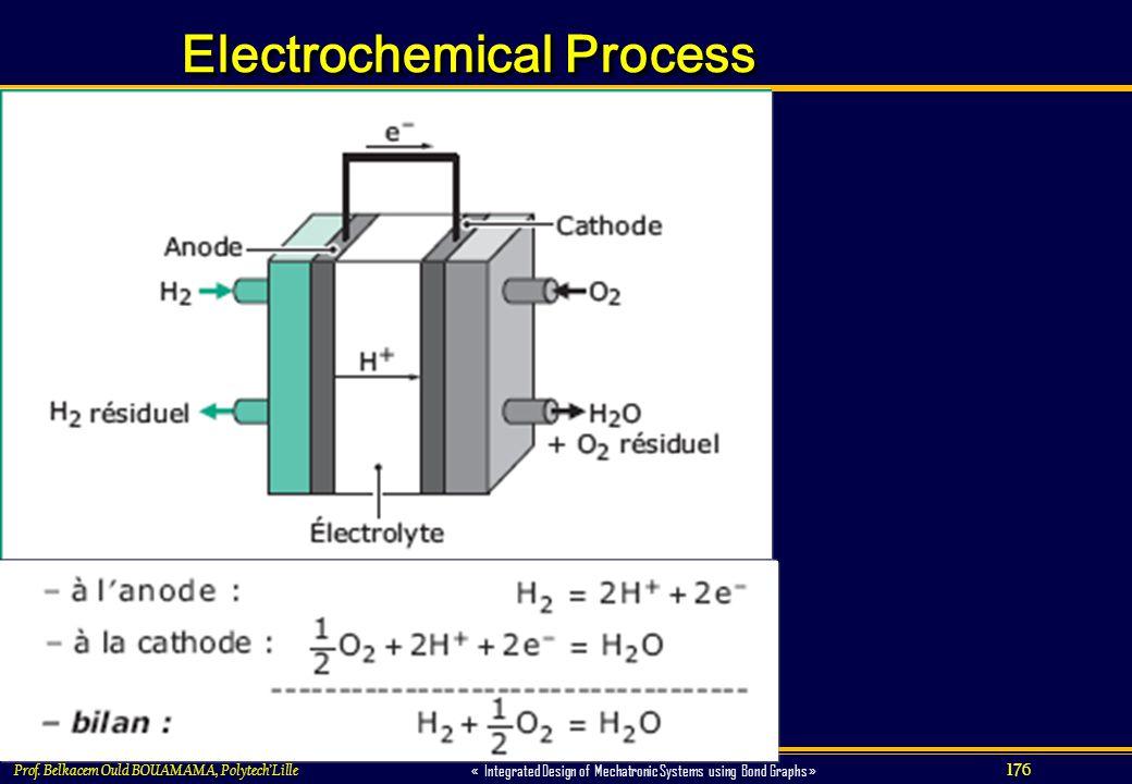 Electrochemical Process