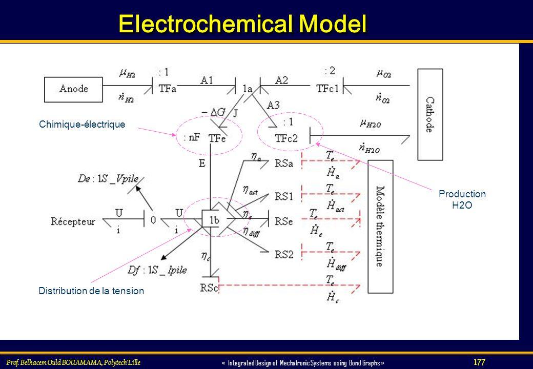 Electrochemical Model