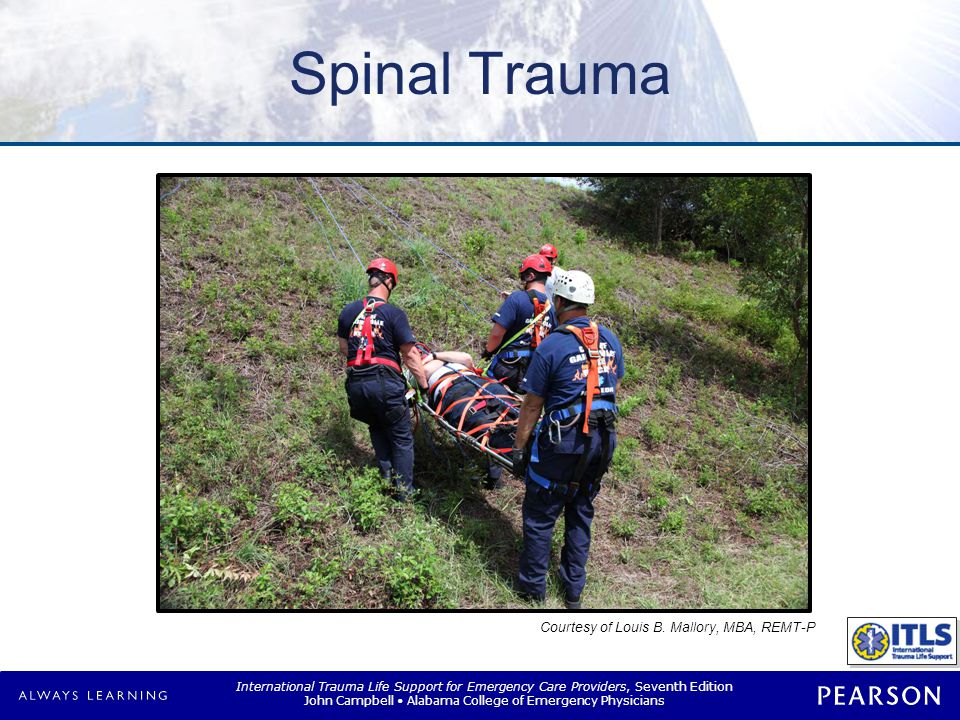 Overview Spinal anatomy and physiology Spinal motion restriction (SMR)