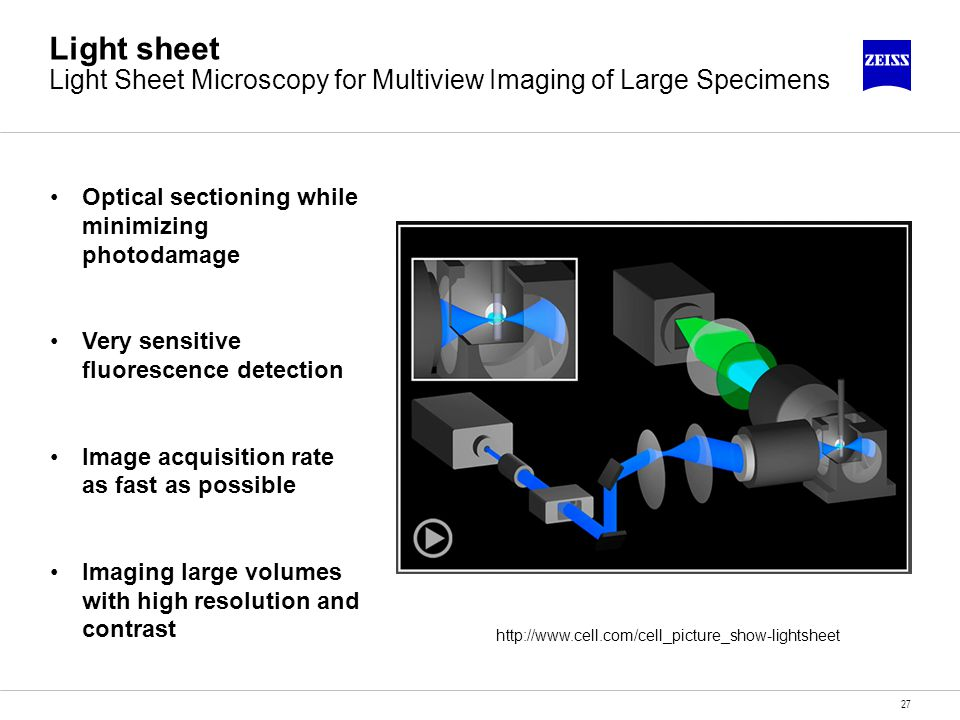 Light sheet Light Sheet Microscopy for Multiview Imaging of Large Specimens
