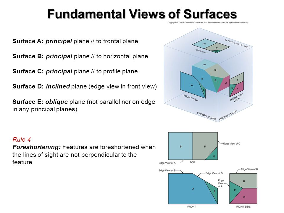 Fundamental Views of Surfaces