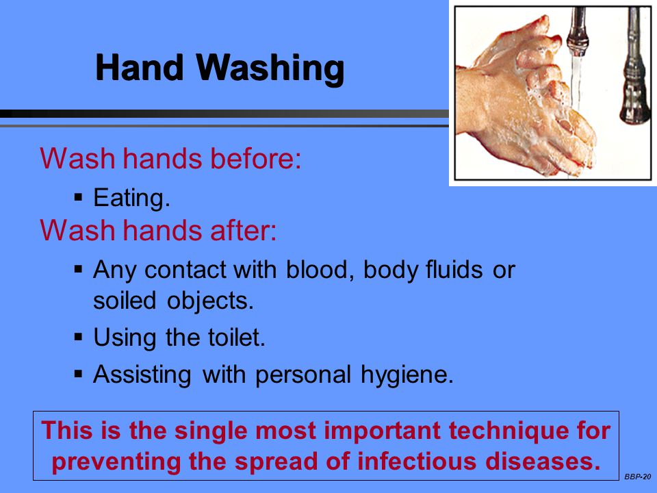 Hand Washing Wash hands before: Wash hands after: Eating.
