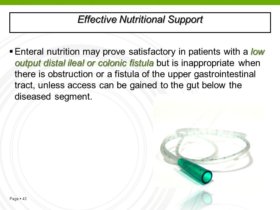 Effective Nutritional Support