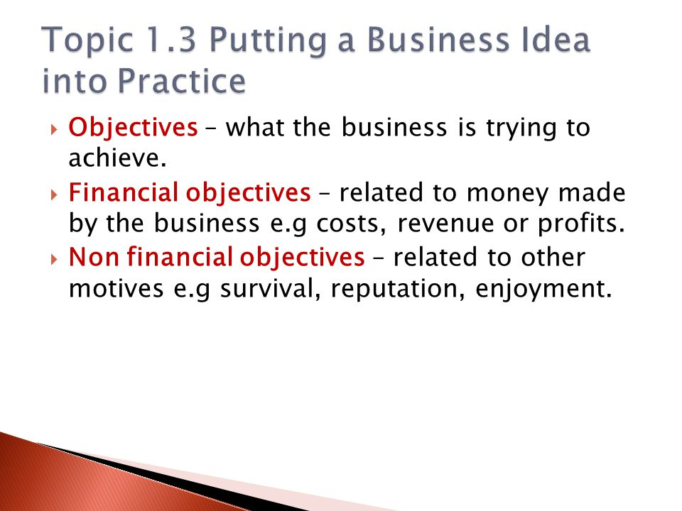 Topic 1.3 Putting a Business Idea into Practice