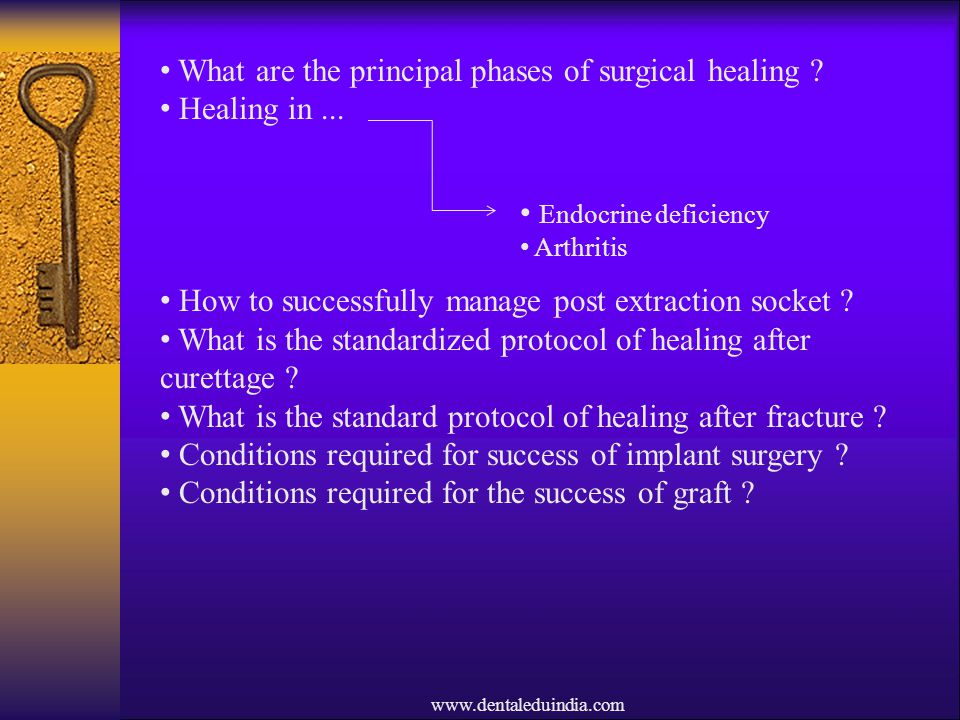 What are the principal phases of surgical healing Healing in ...