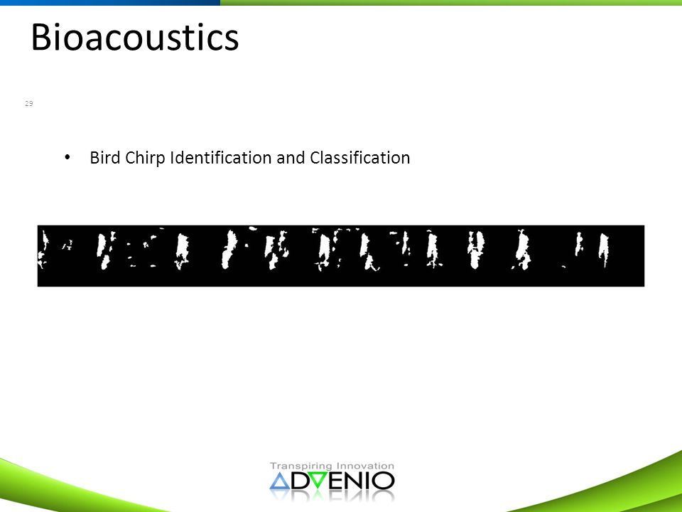 Bioacoustics Bird Chirp Identification and Classification