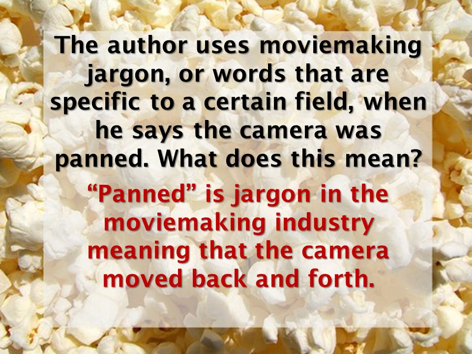 The author uses moviemaking jargon, or words that are specific to a certain field, when he says the camera was panned. What does this mean