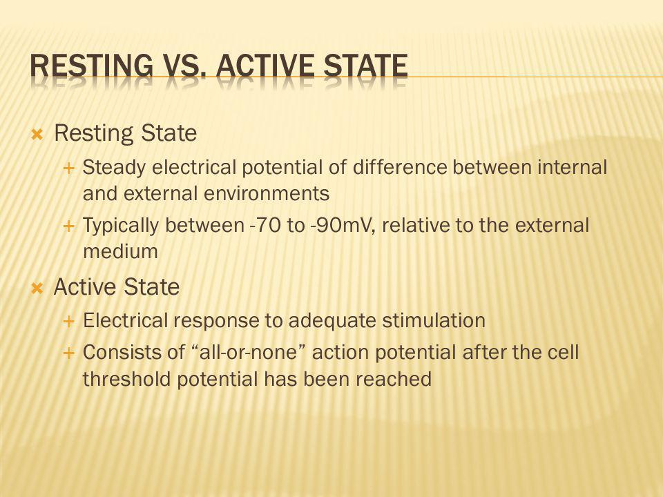 Resting vs. Active State