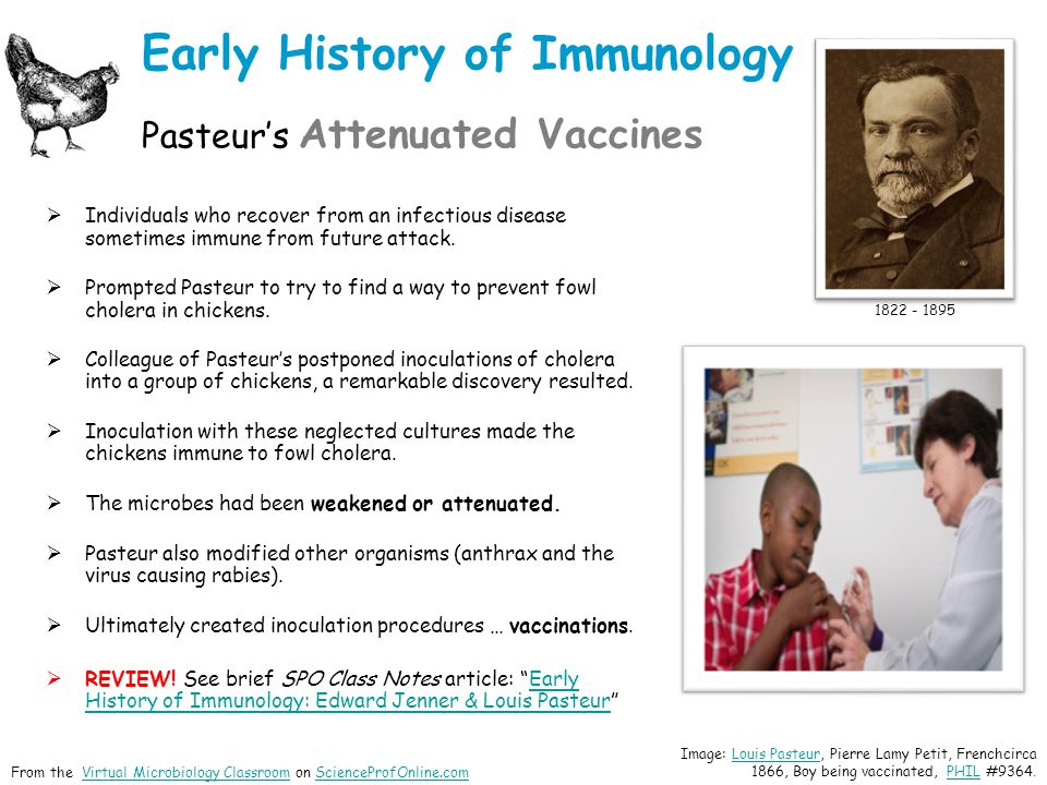 Early History of Immunology Pasteur's Attenuated Vaccines