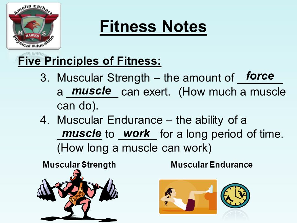 force muscle muscle work
