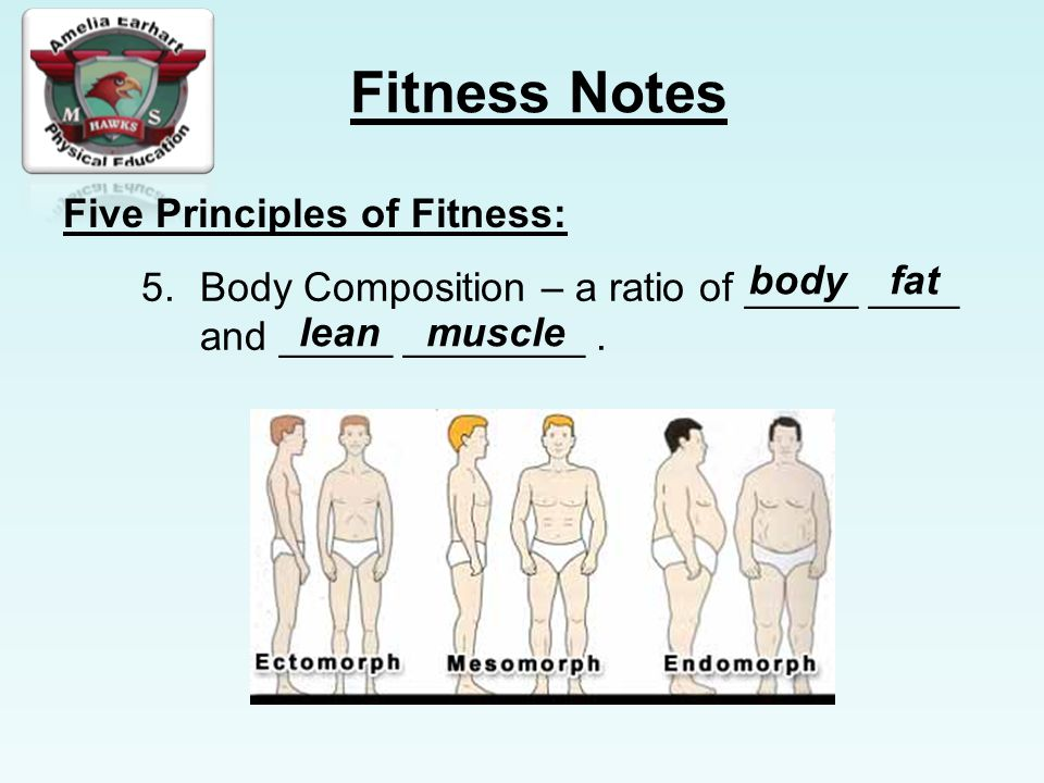 Five Principles of Fitness:
