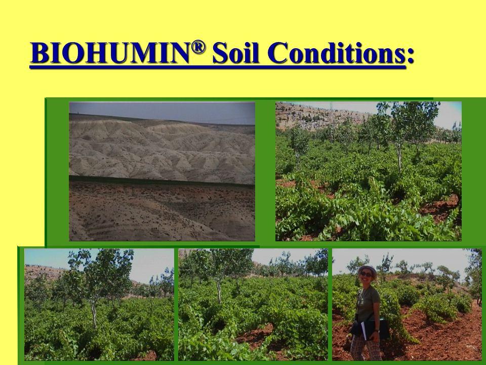 BIOHUMIN® Soil Conditions: