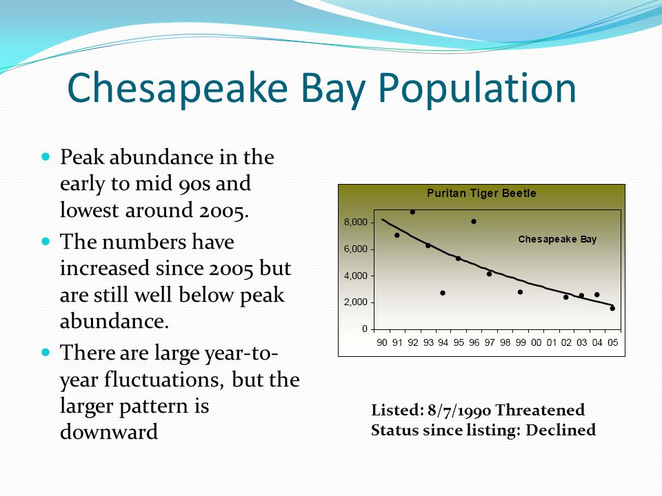 Chesapeake Bay Population