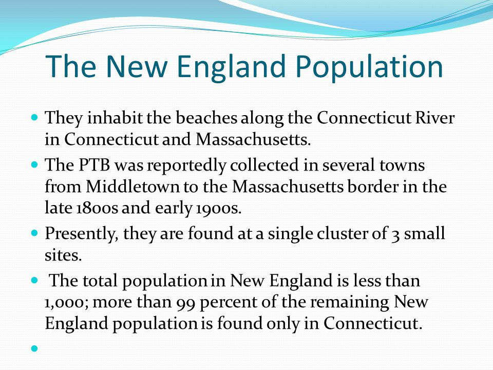 The New England Population