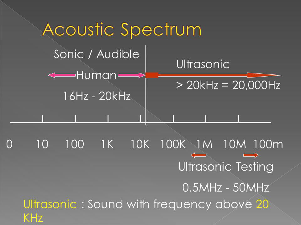 Acoustic Spectrum Sonic / Audible Human Ultrasonic 16Hz - 20kHz