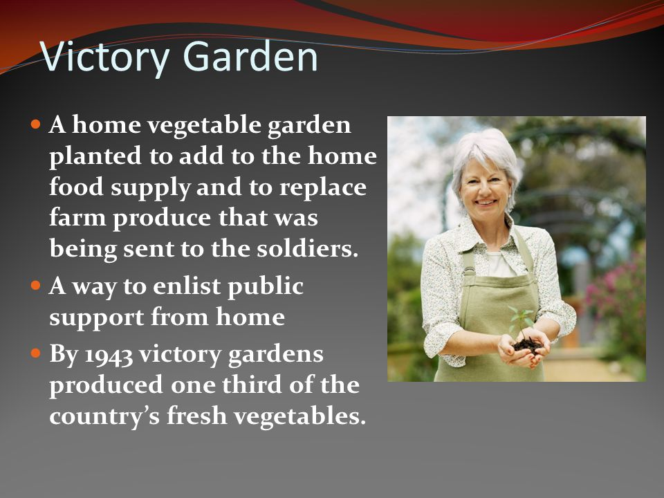 Victory Garden A home vegetable garden planted to add to the home food supply and to replace farm produce that was being sent to the soldiers.