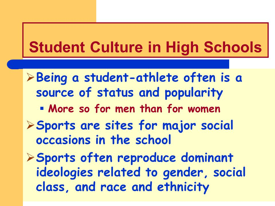 Student Culture in High Schools