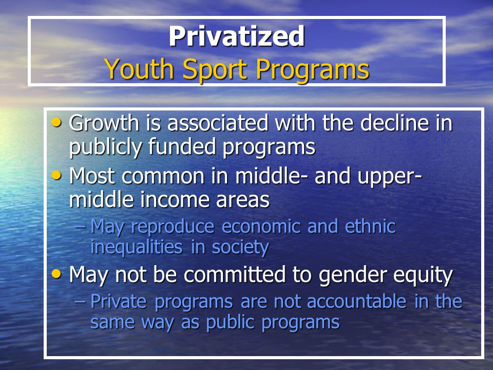 Privatized Youth Sport Programs