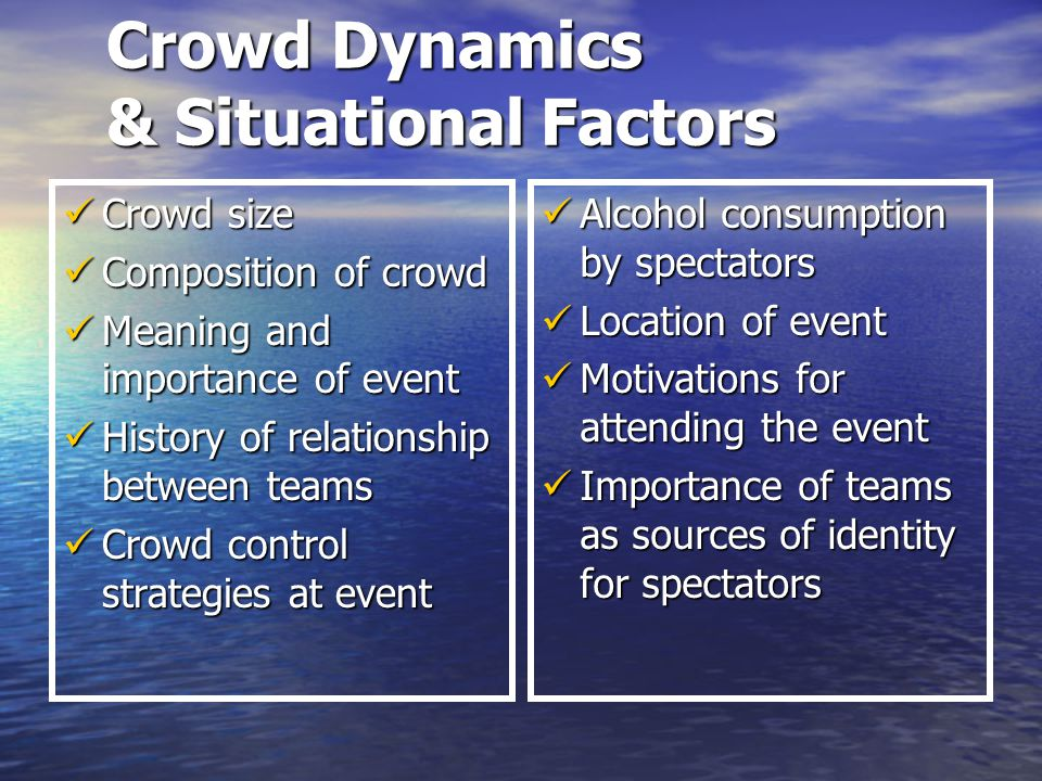 Crowd Dynamics & Situational Factors