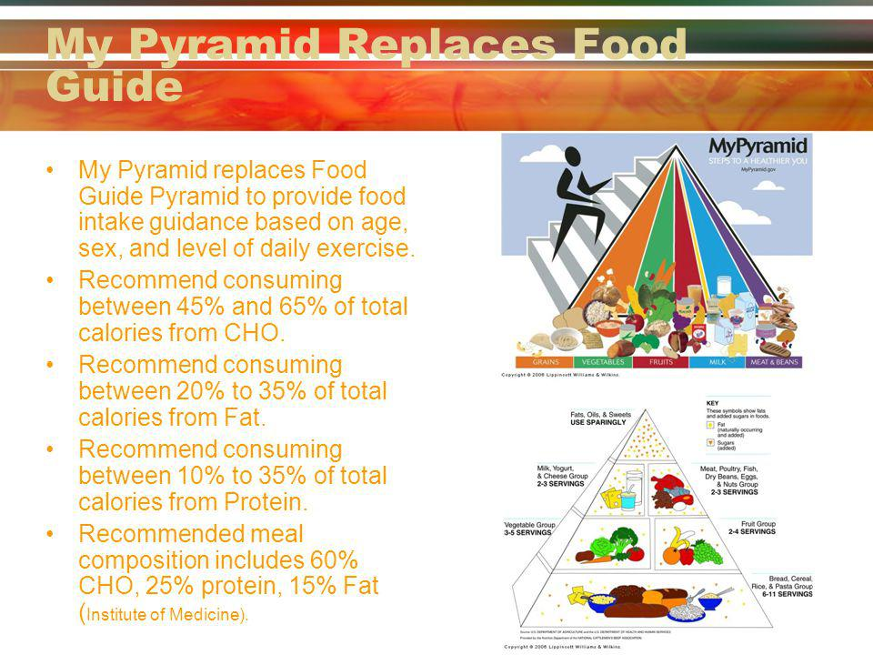 My Pyramid Replaces Food Guide