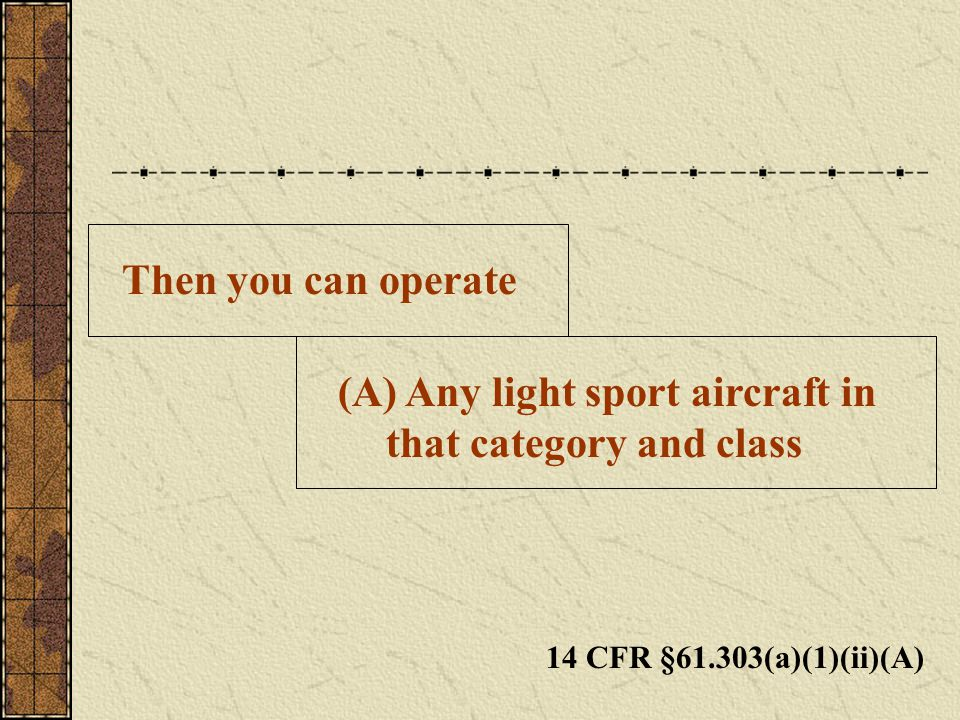 Any light sport aircraft in that category and class