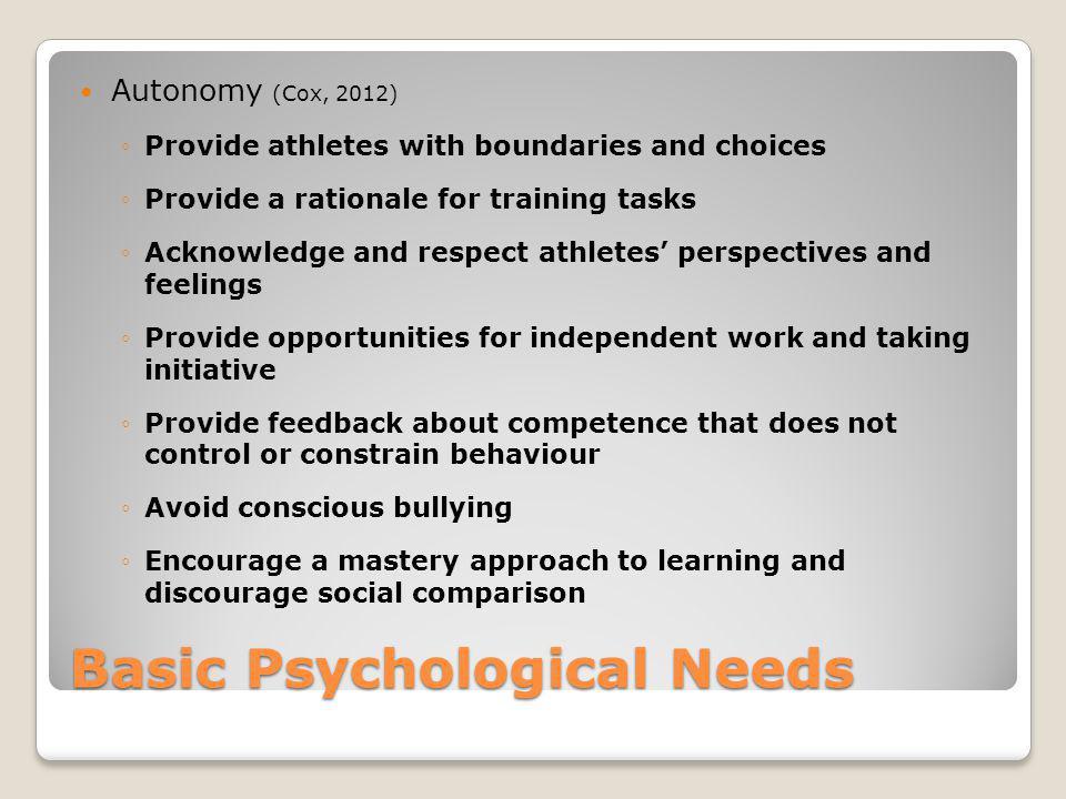 Basic Psychological Needs