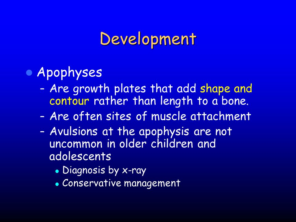 Development Apophyses