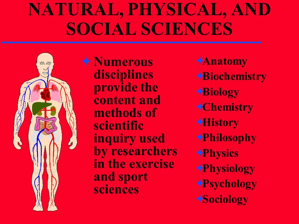 NATURAL, PHYSICAL, AND SOCIAL SCIENCES