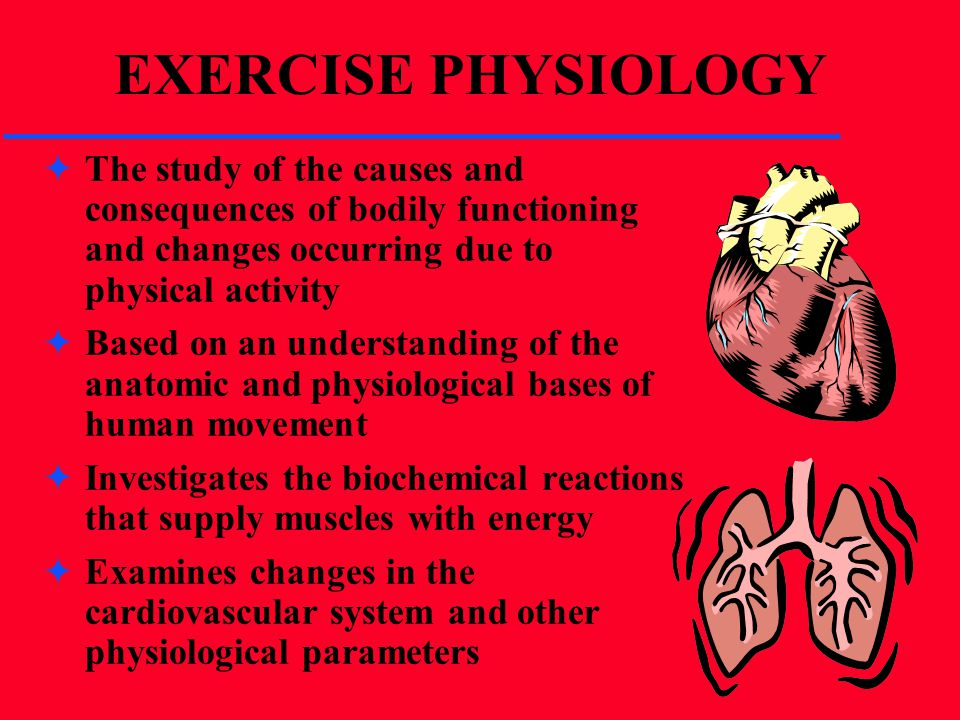 EXERCISE PHYSIOLOGY The study of the causes and consequences of bodily functioning and changes occurring due to physical activity.