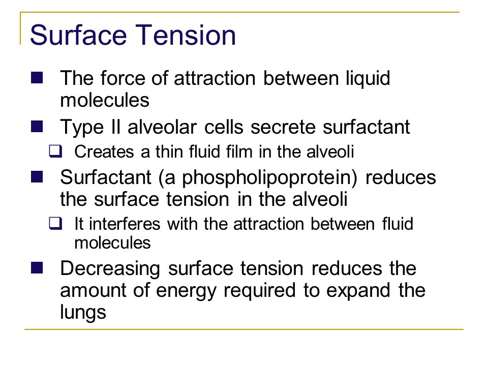Surface Tension The force of attraction between liquid molecules