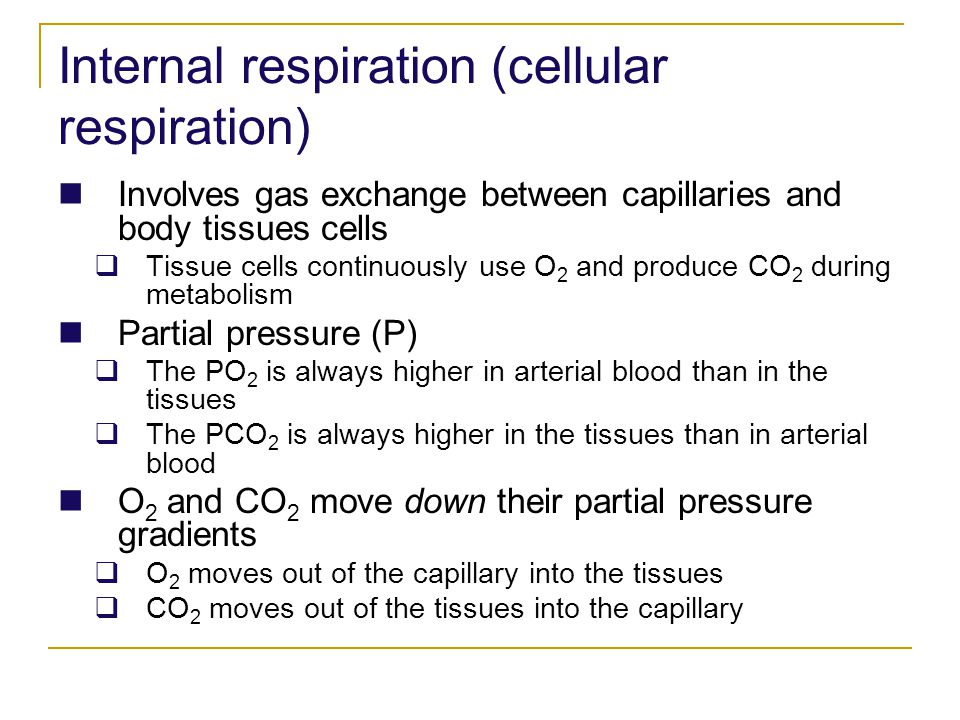 Internal respiration (cellular respiration)