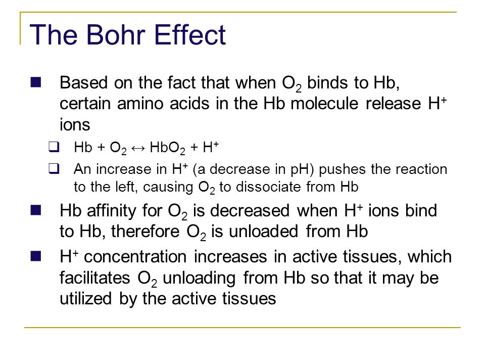 The Bohr Effect Based on the fact that when O2 binds to Hb, certain amino acids in the Hb molecule release H+ ions.