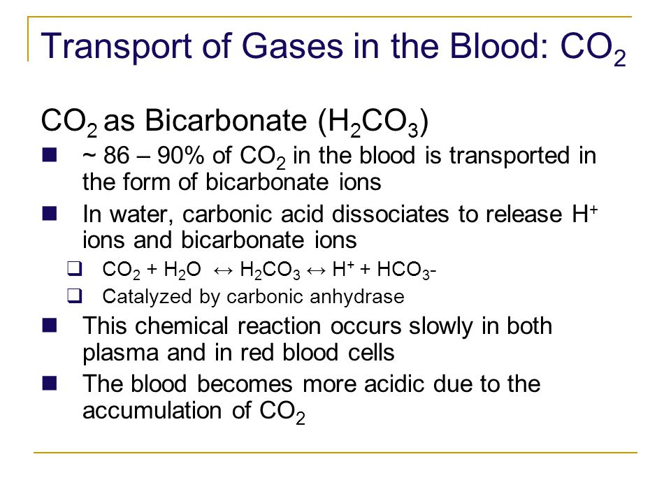 Transport of Gases in the Blood: CO2