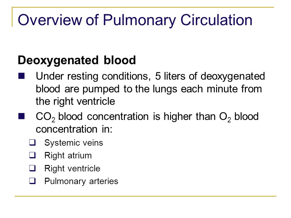 Overview of Pulmonary Circulation