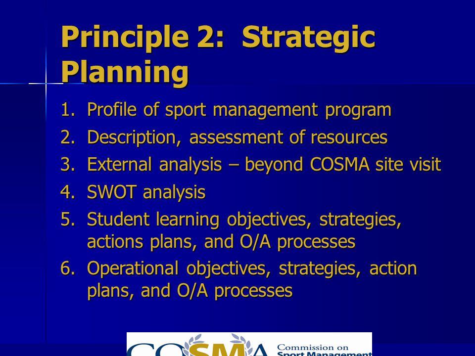 Principle 2: Strategic Planning
