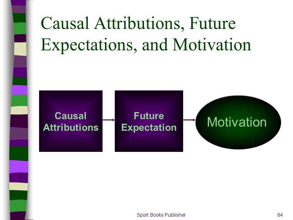 Causal Attributions, Future Expectations, and Motivation