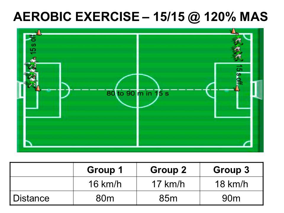 AEROBIC EXERCISE – 15/15 @ 120% MAS