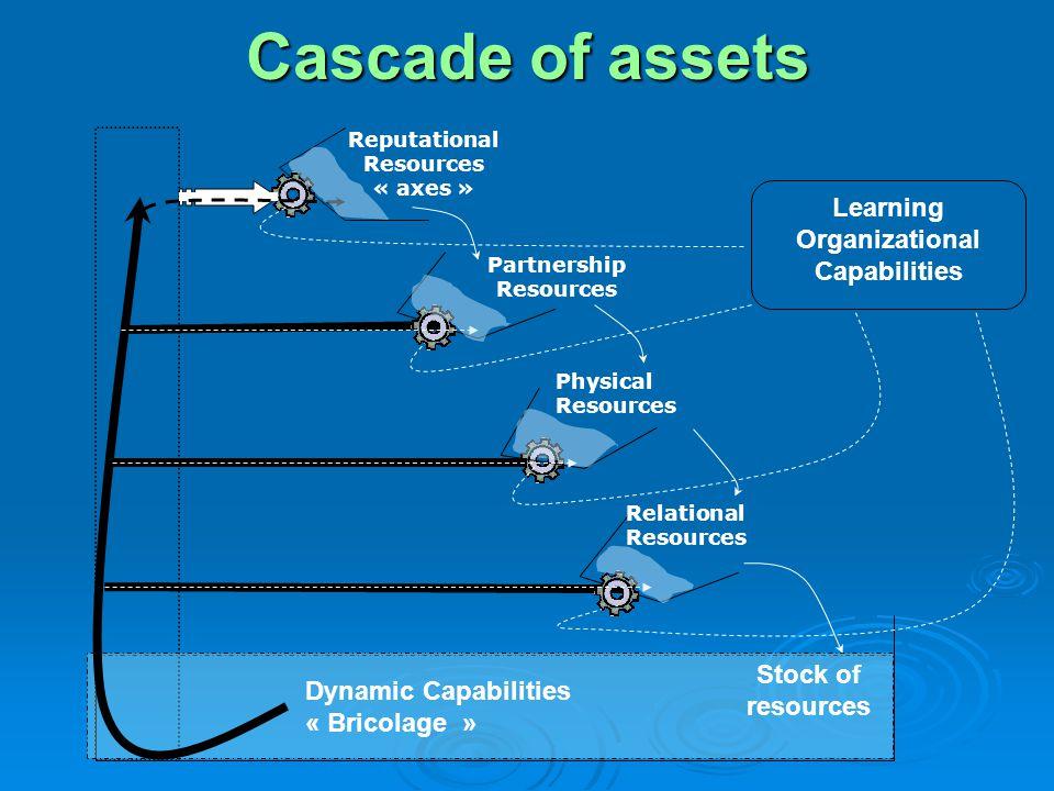 Cascade of assets Learning Organizational Capabilities