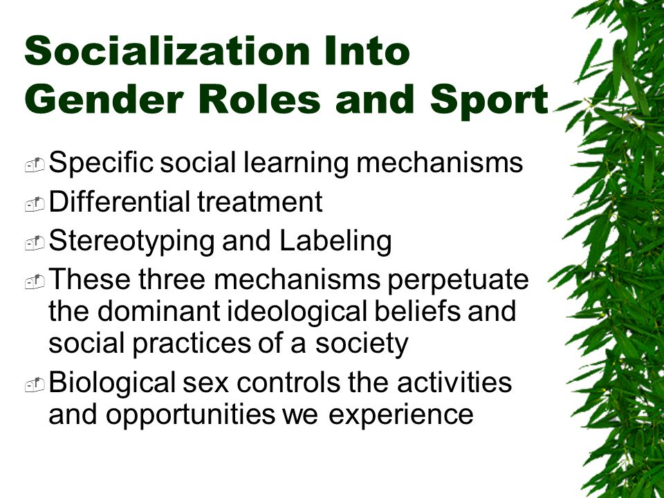 Socialization Into Gender Roles and Sport